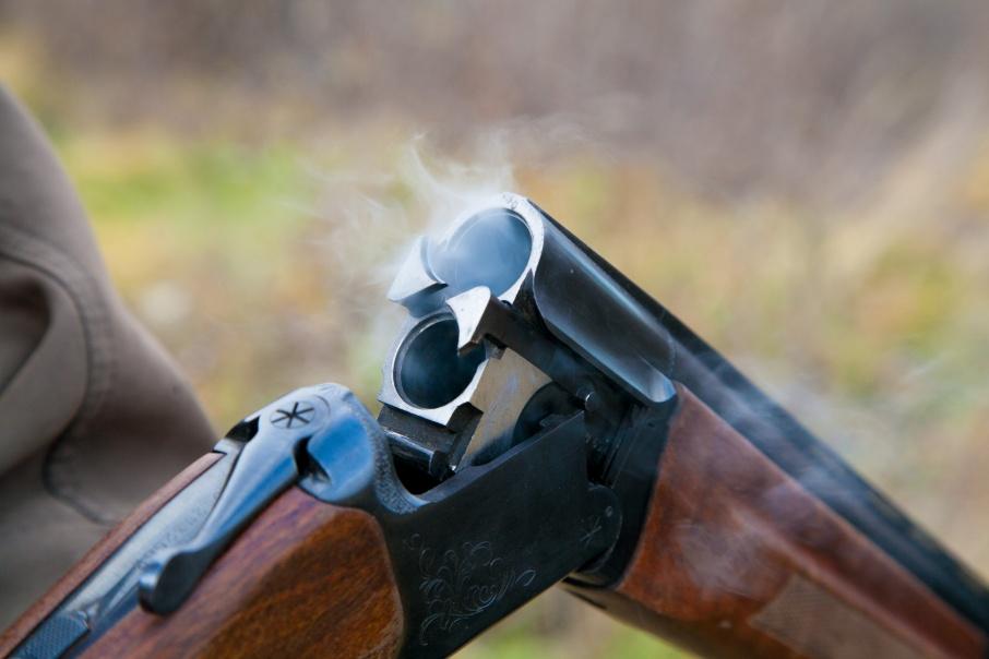 «За пистолет  — до 4000 рублей»: жителей Зауралья призывают разоружаться и приходить за вознаграждением