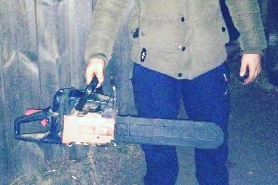 За незаконную рубку 12 сосен директору сельхозкооператива Зауралья грозит до семи лет лишения свободы