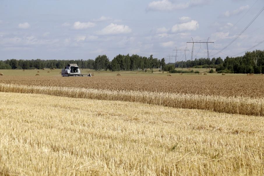 Работникам зауральских сельхозпредприятий доплатили миллион