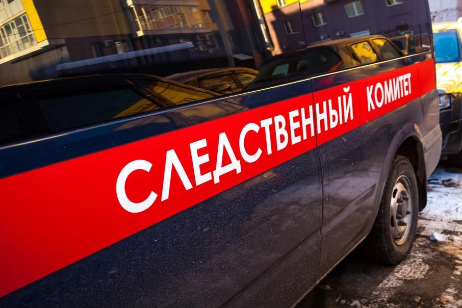 Два человека погибли при пожаре в Каргапольском районе