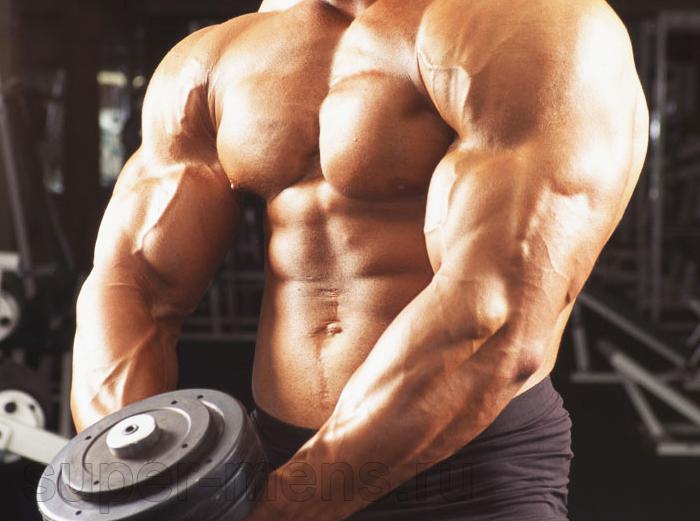 Качественные стероиды для спортсменов