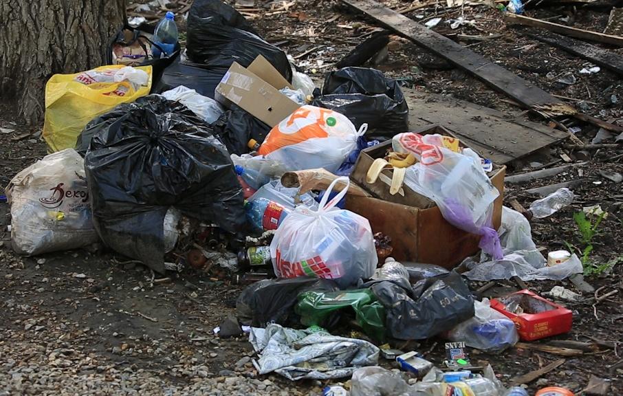 «Свалка не наша»: главное грязное пятно на карте Курганской области ищет хозяина