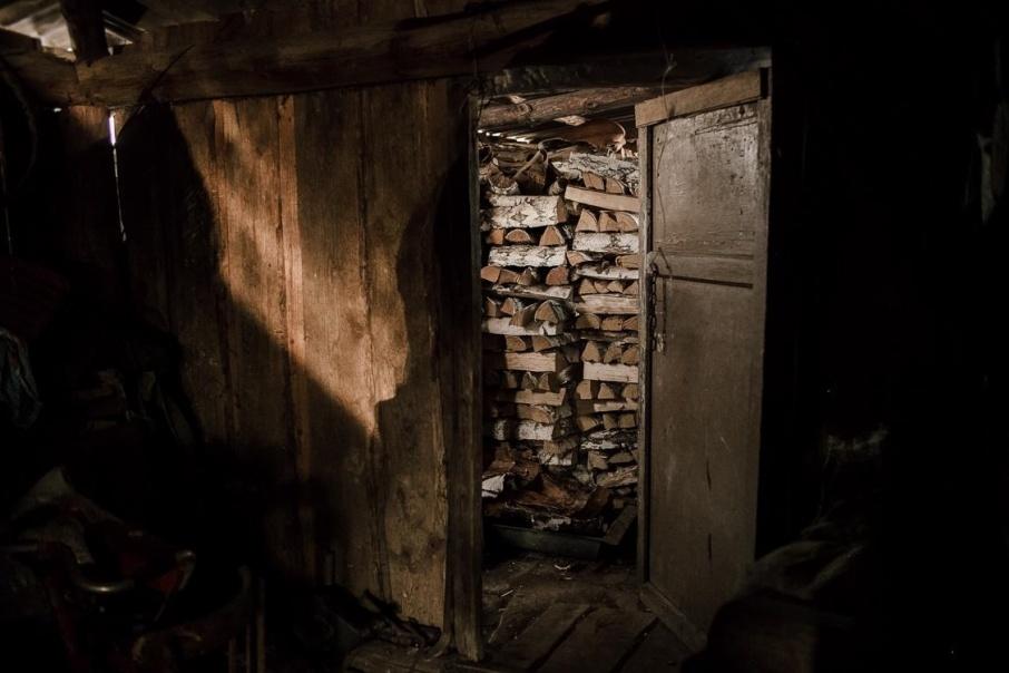 100 тысяч рублей за вырубленный лес заплатило