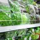 Цены на капусту выросли, на валидол — упали: в Кургане провели мониторинг роста цен