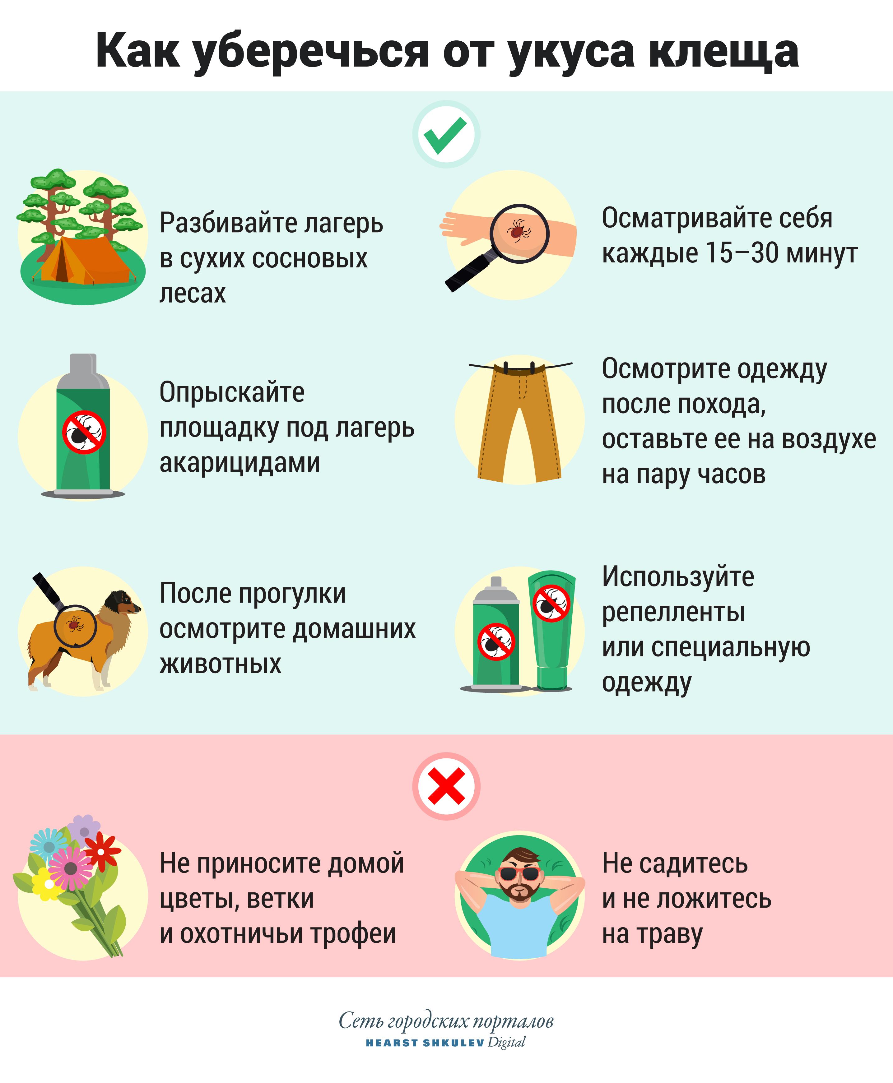 От клеща не зарекайся: инструкция для туристов