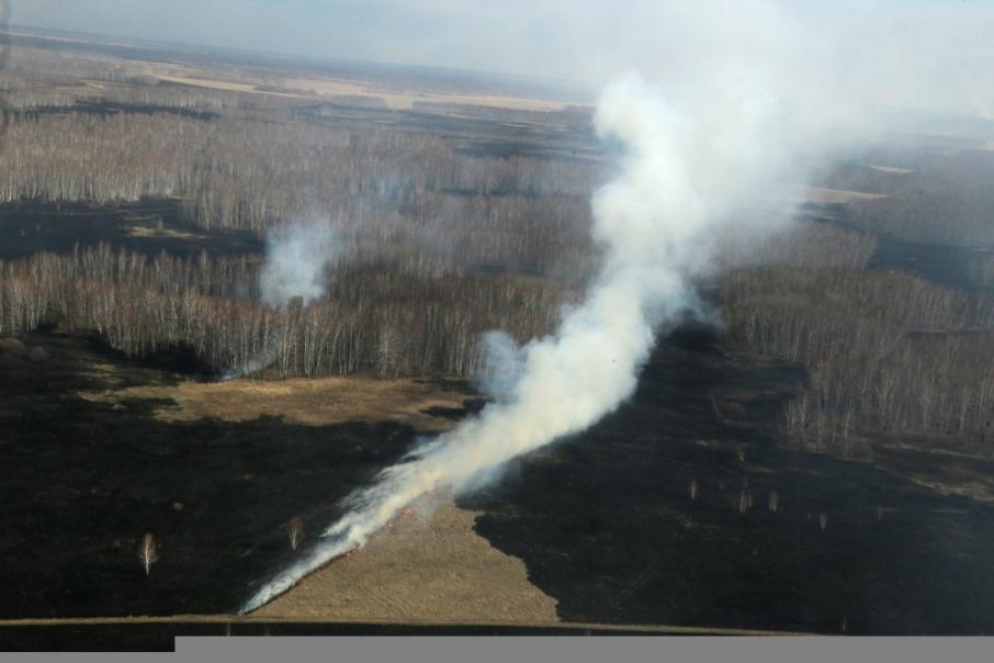 Пресс-служба губернатора: в Зауралье ситуация с пожарами вблизи населенных пунктов стабилизирована