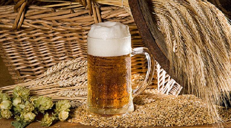 Солод для пивоварения