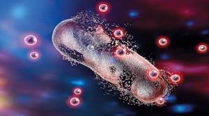 Российские ученые изучат проблему резистентных бактерий