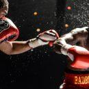 ТОП 5 планируемых боксерских поединков 2020